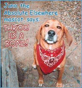 Juno, the Absolute Elsewhere mascot, says: Throw us a bone!